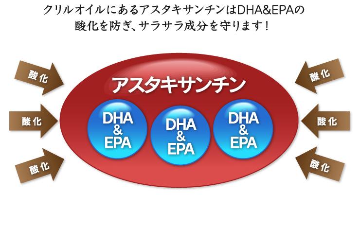 クリルオイルにあるアスタキサンチンはDHA&EPAの酸化を防ぎ、サラサラ成分を守ります!